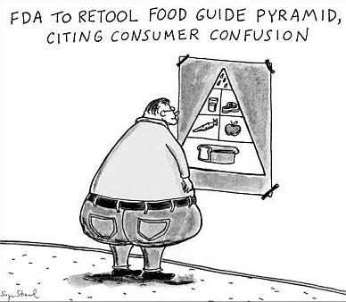 food pyramid new food guidelines