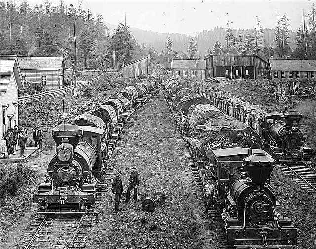 Logging Redwood in northern California 1890