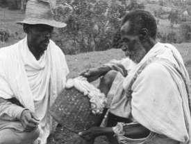 Dorze elders discussing the entrails of a lamb