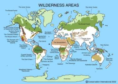 Global remaining wilderness areas