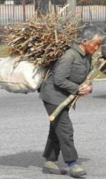 Carrying firewood through the city