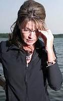 Sarah Palin falls in polls