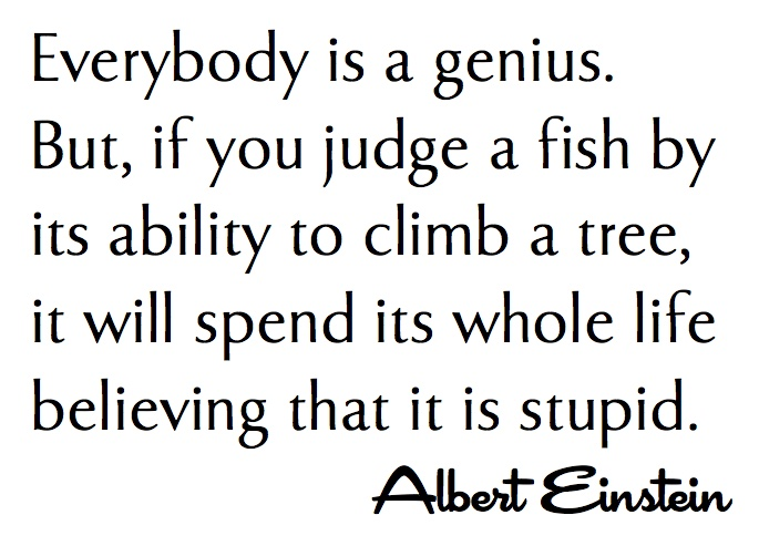 Albert Einstein —Everybody is a genius. But if you judge a fish by its ability to climb a tree, it will live its whole life believing that it is stupid.